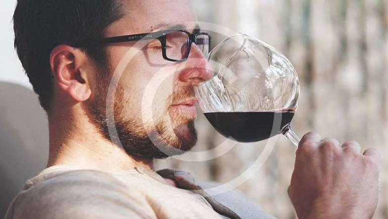 Urban wineries offer tours and tastings