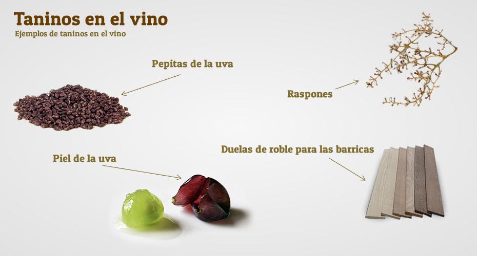 Los Taninos del Vino